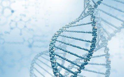 Genética E Transmissão