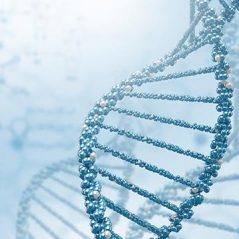 genetica-e-transmissao_2