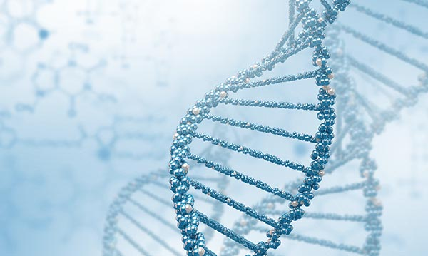 Genetica E Transmissao 2